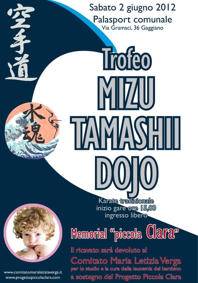 manifesto evento karate